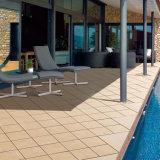 Taille 12X12 normale en gros des feuilles en plastique extérieures vitrifiées glacées de plancher avec la vente chaude de carreaux de céramique à Dubaï