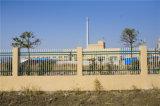 Высокомарочным шикарным декоративным загородка гальванизированная садом стальная 5-2 обеспеченностью