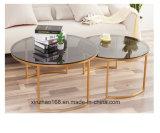 Tavolino da salotto stabilito della doppia Tabella superiore di vetro moderna