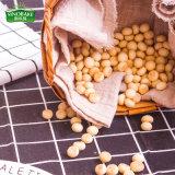 Galletas a granel de la dimensión de una variable de la bola de Sinobake, mini galletas con las vitaminas de la patata