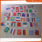 Дружественность к поощрению напечатано PE/бумага/Non-Woven/ткань Custom считает Pennant String флаги