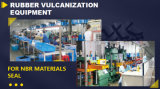 Vct NPT de alta pressão original da vedação de óleo de tipo