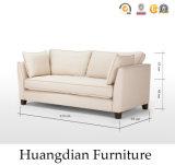 Divan blanc de sofa de salle de séjour de tissu de modèle simple (HD541)