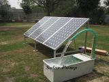 Prezzo poco costoso solare del sistema 300W del comitato poli