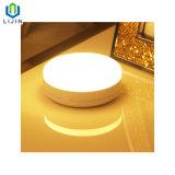 Kleines Licht-Esteuertes menschliches Wand-Licht der Induktions-Lampen-LED