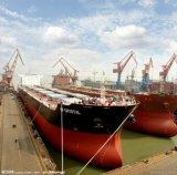Récipient de conteneur de constructeur de bateau de la Chine à vendre