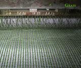 16 년을%s 가진 직업적인 제조자 풋볼 투수 합성 잔디 경험 (ST)