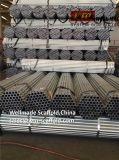 Il programma 40 ha galvanizzato il tubo d'acciaio