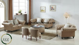 Il nuovo sofà del tessuto del salone di modo di stile ha impostato con buona qualità