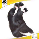 Шикарная малайзийская полоса Hhair держателя волос Али Moda
