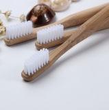 proteção ambiental Ecologia original de Dentes de bambu