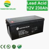 Lange Lebensdauer Exide Batterie 12V 220ah