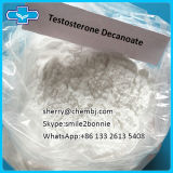 Steroid Hormon-Puder-Testosteron Decanoate mit bestem Preis