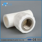 極度の品質の中国PPRのプラスチック配管の付属品