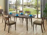 단단한 나무로 되는 식탁 거실 가구 (M-X2394)
