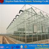 Grünes Haus-galvanisierte Stahlrahmen-Gewächshaus-Rosen-Glaslandwirtschaft