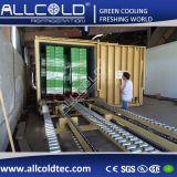 Зеленый вакуумного охлаждения охладителя овощей вакуумные трубки фруктов