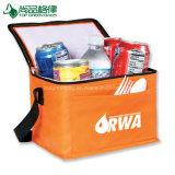 Прочный мешок полиэтилена Eco пригодности дешево изолированный Non сплетенный более холодный