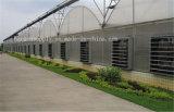 La ventilation industrielle de la volaille de serre du ventilateur Ventilateur ventilateur d'échappement