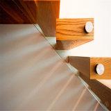 純木の踏面を柵で囲む現代デザインステンレス鋼のステアケースの緩和されたガラス