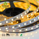 Fabricant de Shenzhen 300LED RVB 5m 12V SMD5050 14,4 W/M LED Flexible Strip (BOND LED)