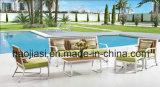 /Rattan esterno/sofà esterno HS3020 della mobilia hotel Patio//del giardino