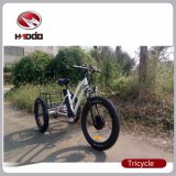 Triciclo eléctrico del neumático gordo para el hombre con el freno de disco del poder más elevado y del doble