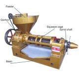 Venda a quente Big Cottonseeds Máquina de extração de óleo