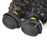 Il tessuto brasiliano dei capelli dell'arricciatura profonda impacchetta 2 parti di 100% dei capelli umani di estensione dei capelli