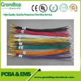 Câble personnalisé du faisceau de fils de l'automobile assemblée avec 12 années d'expérience