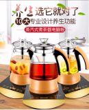 Caldaia di tè elettrica multifunzionale del Mnd Wa-985 con il tipo del riscaldamento di vapore