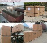 18mm 광고 방송 필름은 Shandong 공장에서 합판을 직면했다