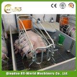Оборудования свиньи Ce DIP стандартного горячий гальванизировал порося стойло клети