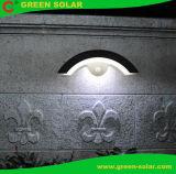 LED solaire étanches IP65 avec ce mur du jardin feux compatible RoHS