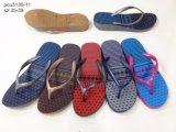 新式の女性のスリッパは蹄鉄を打つ浜の靴(YG3130-5)に