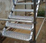 Trap de Van uitstekende kwaliteit van de Steiger HDG Cuplock