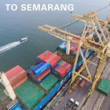 [منون] بحث شحن عمليّة شحن من [غنغزهوو] إلى إندونيسيا