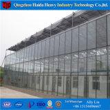 Serre chaude en verre de PC de Venlo d'approvisionnement d'usine avec le meilleur prix