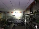 31.6pulgadas de alta calidad de la barra de luz LED para uso agrícola, Offroad, Marine