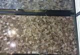 Le bois fossile de tuiles de pierres précieuses de dalles de pierre précieuse Brown Semi Panneau mural