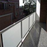 Coluna de aço inoxidável exterior de vidro Corrimão / Vidro fosco preço para a grade da plataforma
