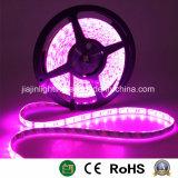 Indicatore luminoso di striscia del LED per la decorazione di natale