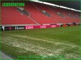 L'intérieur du stade pleine couleur LED Affichage de périmètre
