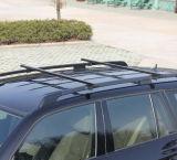 Cremagliera di tetto universale dell'automobile del ferro (BT RF311)