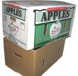 과일 포장 상자