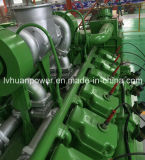 de Elektrische Generator of Genset van de Macht van de Motor van het Aardgas van Biogass van het LNG 100kw CNG