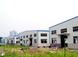 Светлая мастерская стальной структуры Prefab (KXD-SSW291)