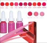 Permanentes Verfassungs-u. Tätowierung-Pigment/Tinte