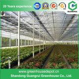 Landwirtschafts-Stahlkonstruktion PC Blatt-Gewächshaus für Gemüse