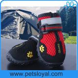 O engranzamento respirável do animal de estimação calç o produto impermeável do cão dos carregadores do cão